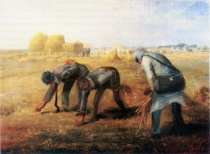 农业番PP