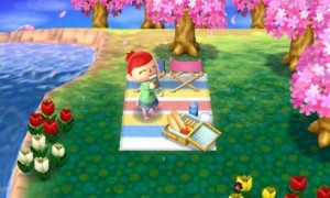 new leaf picnic