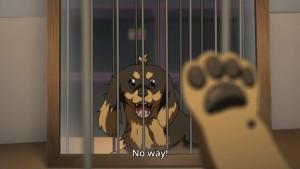 I'm a dog!