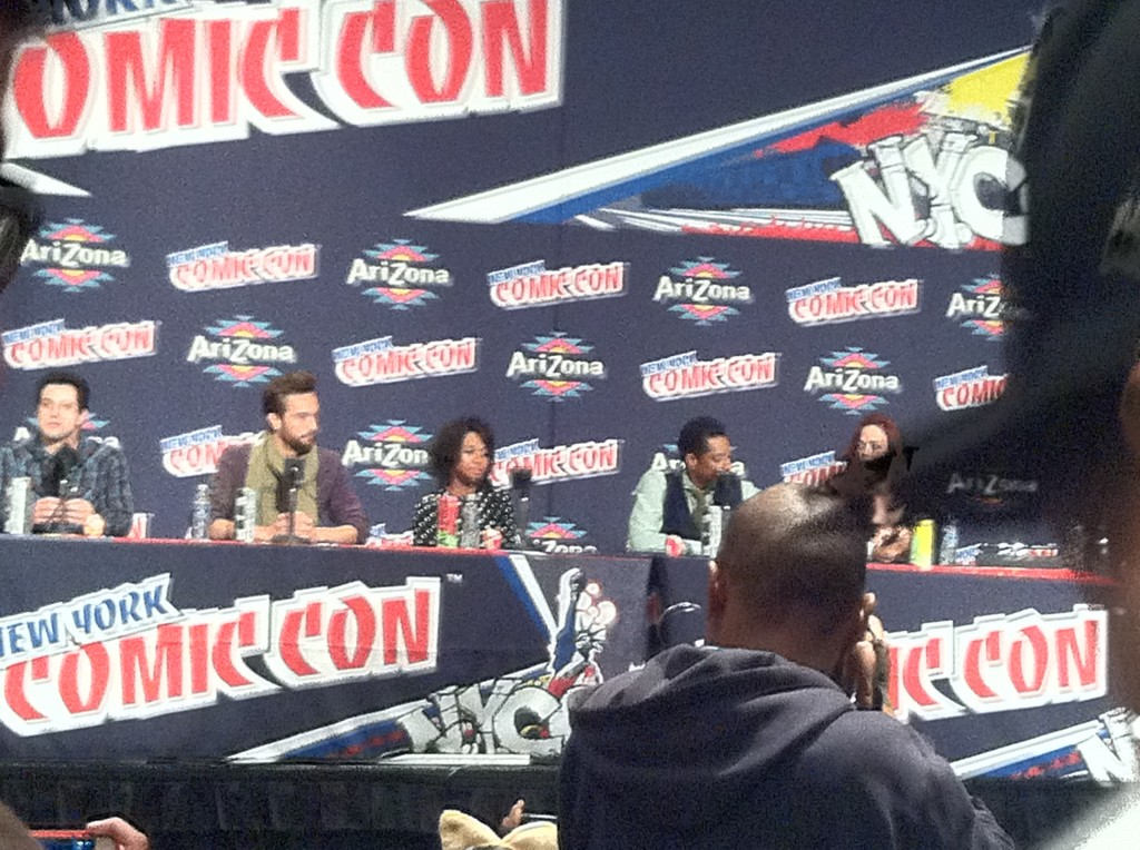 Getting a good picture of this panel was like trying to win an uphill battle.