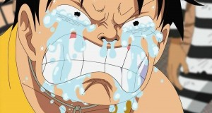 one-piece-luffy-the-feels