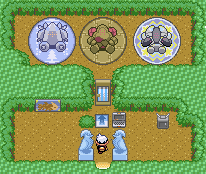 Pokemon gen 3 secret base