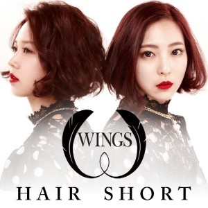 wings hair short cover