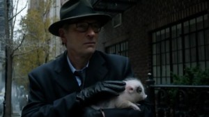 It takes a special sort of actor to manage to look menacing while holding a baby pig...